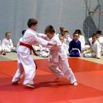 Sztuki walki – sport czy rekreacja