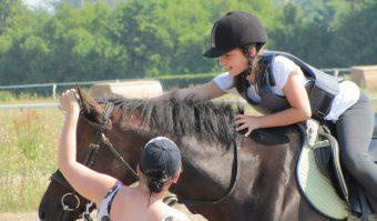 Sprzęt jeździecki